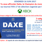 Capture tournoi fifa